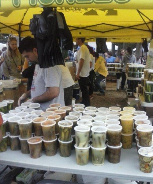 pickle-festival-2013-7