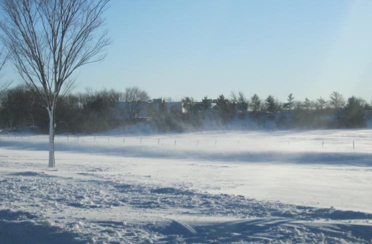 blizzard-5
