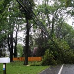 TREES TAKE OUT POWER LINES ON LENOX