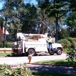 Verizon brings new pole