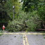 More Roads closed -West Neck Road