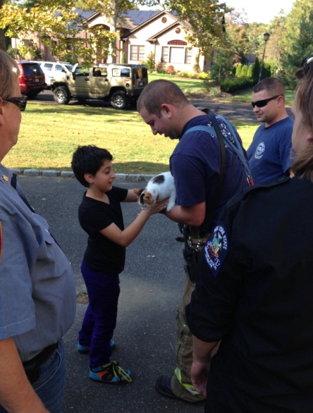 Dix Hills FD Rescues Cat From Tree 2