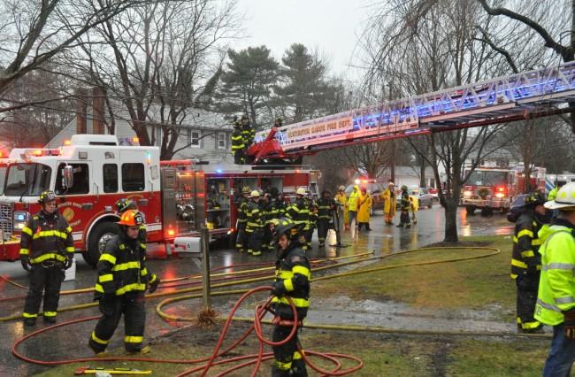 Diane Crest Fire 6