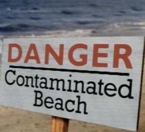 beachcontam
