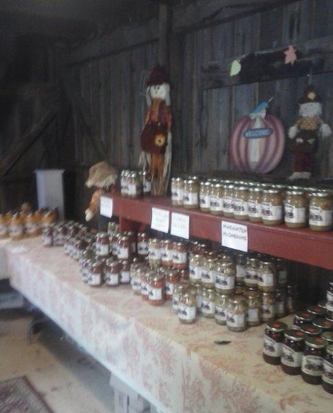 pickle-festival-2013-5