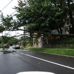 WIRES AND TREE DOWN NY AVE