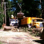 Town crews clean up massive tree