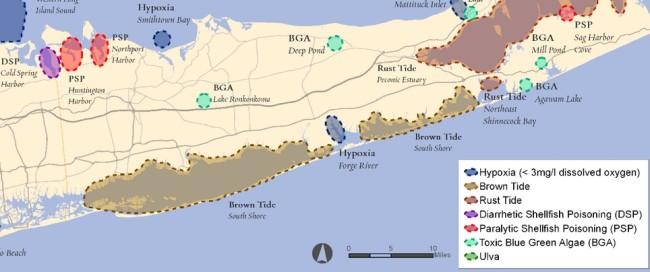 LI Map